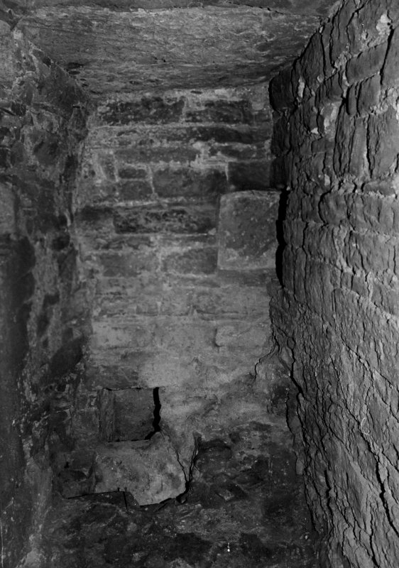 Excavation archive: Interior of cellar at groudn floor level. From N.