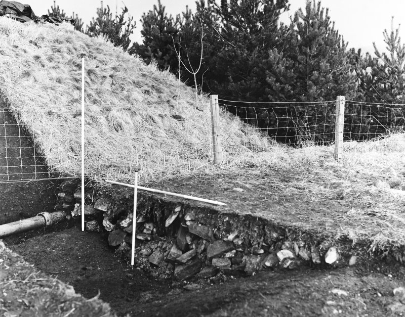 Roberton, motte: view from SW of motte under excavation C Tabraham, 1979
