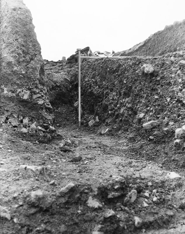 Excavation photograph - 19th century gravel quarrying at edge of silage pit, looking SE.