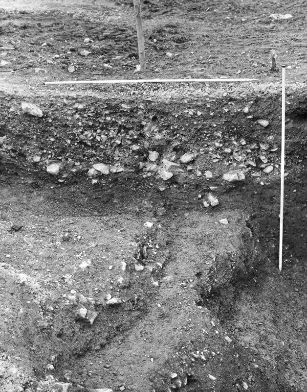 Excavation photograph - west section.
