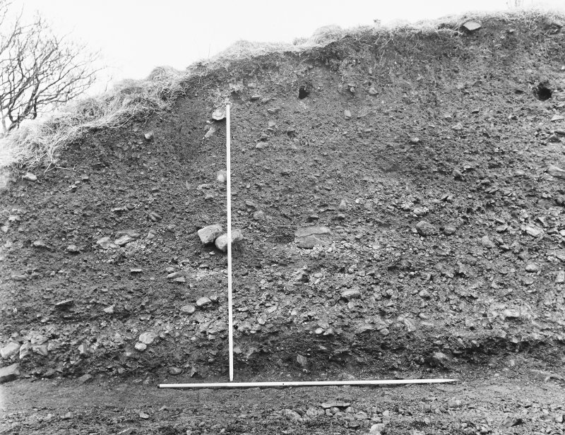 Excavation photograph - east section, north segment.
