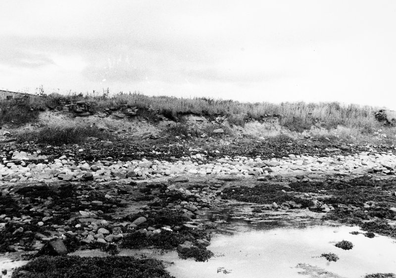Panorama of coastal section, E portion Dr R Lamb