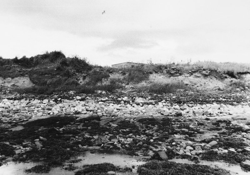Panorama of coastal section, central portion  Dr R Lamb 1985