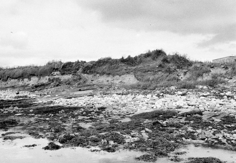 Panorama of coastal section, W portion Dr R Lamb