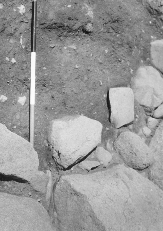 Excavation J.N.G.Ritchie
