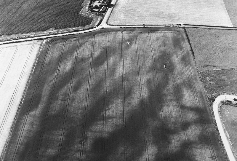 Oblique aerial view of Balneaves Cottage centred on the cropmarks of ring-ditches, pits and a pit-defined cursus, taken from the E.