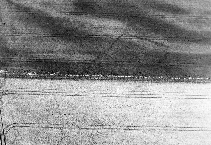 Oblique aerial view of Balneaves Cottage centred on the cropmarks of a pit-defined cursus, taken from the SSE.