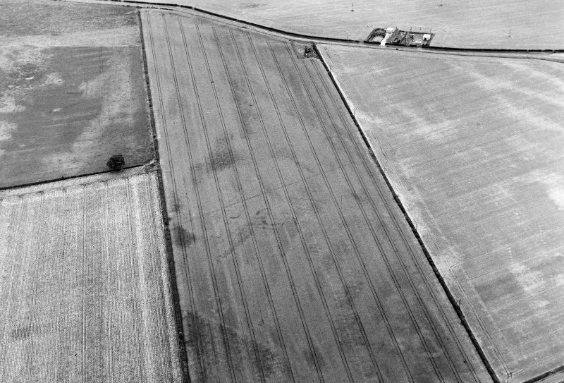 Oblique aerial view of Ballownie centred on the cropmark of an unenclosed settlement, with pit-defined cursus and rig adjacent.  Taken from the SSE.