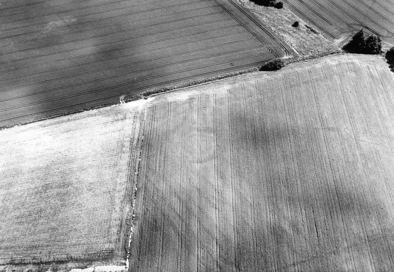 Oblique aerial view centred on the cropmarks of the settlement and rig, taken from the W.