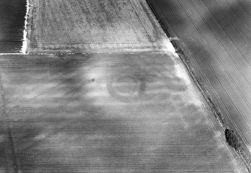Oblique aerial view centred on the cropmarks of the settlement and rig, taken from the S.