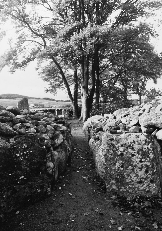 Excavation photograph : looking from interior down passage.