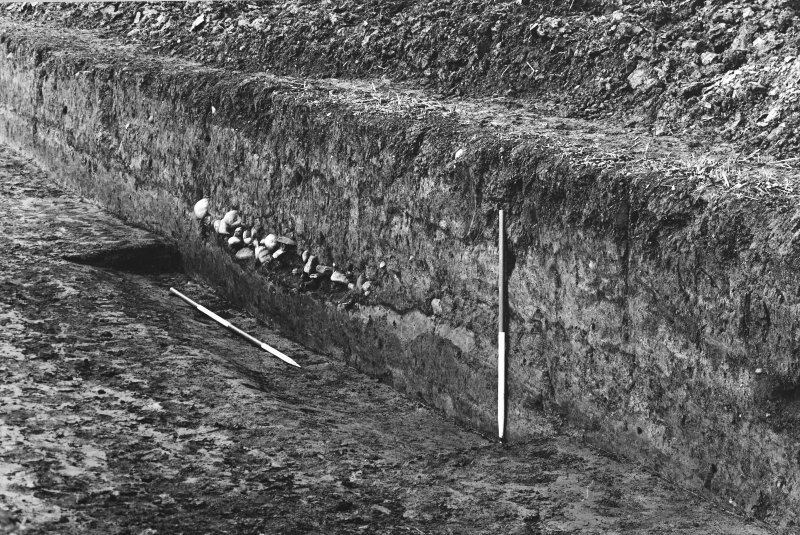 Trench 1, N side, Rampart.
