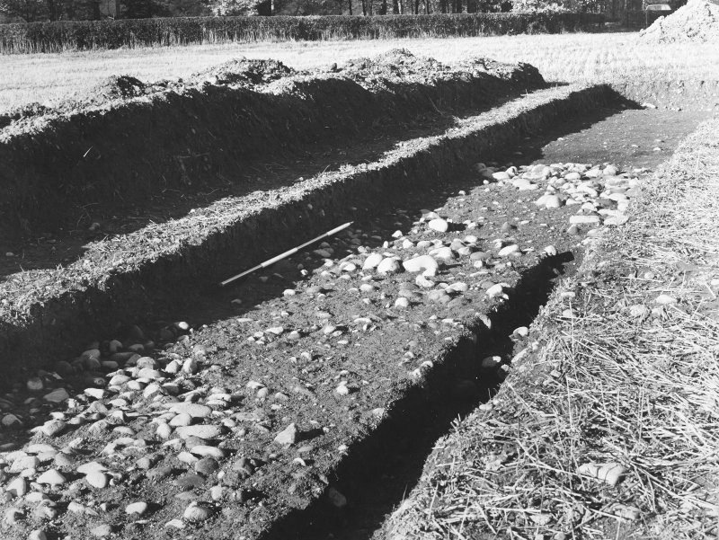 Trench 2, Area of cobbling.