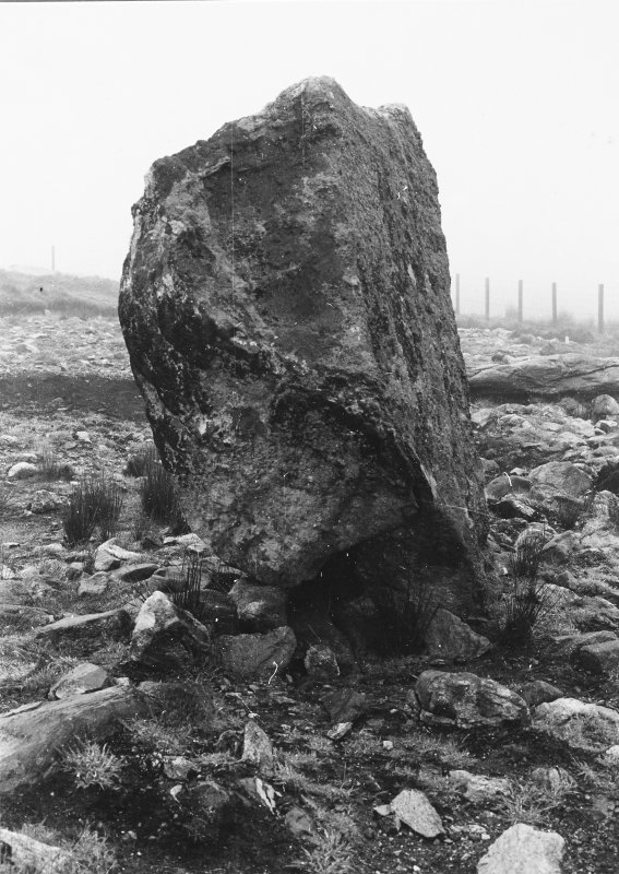 Southern standing stone